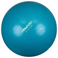 Avento Palla per Fitness/Palestra Diametro 55 cm Blu
