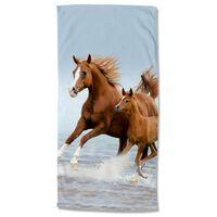 Good Morning Telo da Spiaggia FREE 75x150 cm Marrone e Blu