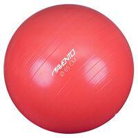 Avento Palla per Fitness/Palestra Diametro 65 cm Rosa