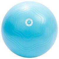 Pure2Improve Palla Fitness 65 cm Blu Chiaro