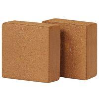 vidaXL Blocchi di Fibra di Cocco 2 pz 5 kg 30x30x10 cm