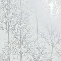 DUTCH WALLCOVERINGS Carta da Parati Rhea Trees Grigia e Argento