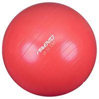 Avento Palla per Fitness/Palestra Diametro 55 cm Rosa