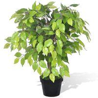 Ficus Nano Artificiale con Vaso 60 cm
